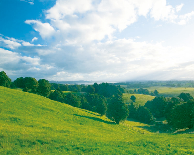 ニュージーランドの大自然で育った牛の生乳から作られたサプリメント「ファーストミルプレミアム」。